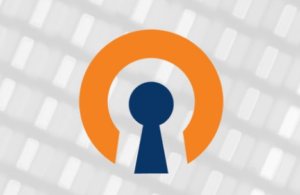 OpenVPN for Windows 10